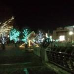 川口駅 クリスマスイルミネーション
