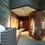 ミュージアムパーク茨城県自然博物館に行ったので口コミします。